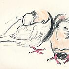 Dove Duo3 by WoolleyWorld