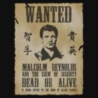 Wanted Captain by Shaun Beresford