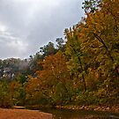 Color on the Bluff by Lisa G. Putman