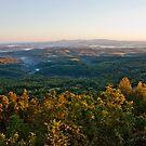 Arkansas Vista by Lisa G. Putman