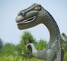 Eco Dinosaur, Batticaloa, Sri Lanka by Martina Nicolls