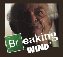 Breaking Bad/Breaking Wind by substrate50hz