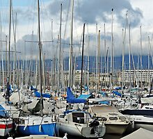 Geneva Harbour by Alexandra Lavizzari