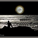 Moonlight Shadows by Kevin Meldrum