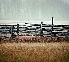 Country Fence  by Steve St.Amand