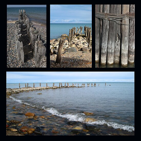 Old Pilings Collage Lake Huron and Michigan by marybedy