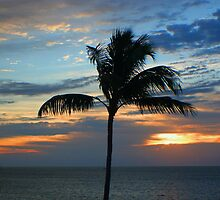 Sunrise's and Sunset's of Key West by SDSPhotography