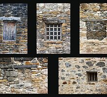 Mission Windows by marybedy