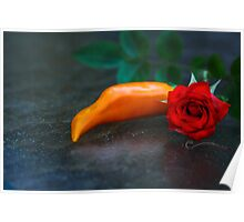 Spicy & Aromatic Still LIfe Poster