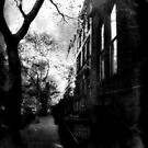 NYC Townhouses by ShellyKay