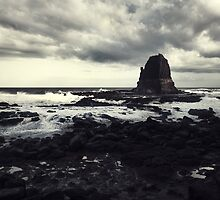 Cape Schanck 2011 by Tim Allen