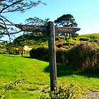Hobbiton/Green Dragon Signpost at Hobbiton - New Zealand by Nicola Barnard