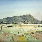 Helsby Hill by Anne Bonner