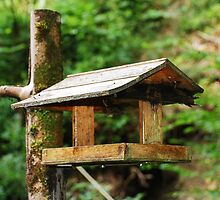 Wooden Bird Table by jojobob