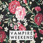 Vampire Weekend by sdunaway
