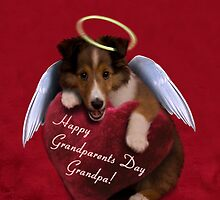 Grandparents Day Grandpa Angel Sheltie by jkartlife