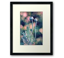 Natural Conclusion Framed Print