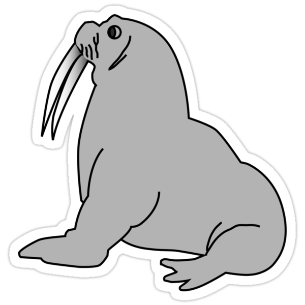 Grey Walrus by kwg2200