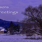 Seasons Greetings by Adrian Harvey