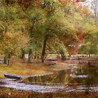 Mississippi Lake in Autumn by Ginger  Barritt