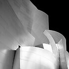 Disney Concert Hall by Fern Blacker