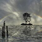 3116 by peter holme III