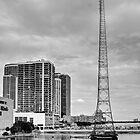 WQAM Radio Tower by njordphoto