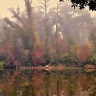 Early Morning Fall Color by DottieDees