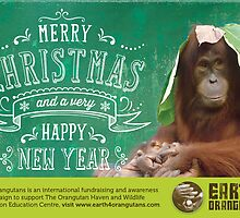 Earth 4 Orangutans Christmas Card by Raw Wildlife Encounters