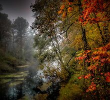 We All Have Hope ~ Fall Colors ~ by Charles & Patricia   Harkins ~ Picture Oregon
