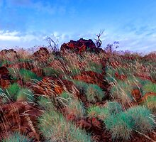 Pilbara Rocks and Spinifex by dioptrewho