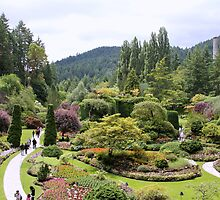 Sunken Garden by Camilla