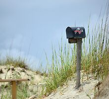 Kindred Spirit mailbox by weatherington