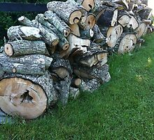 Woodpile by YellowBarn