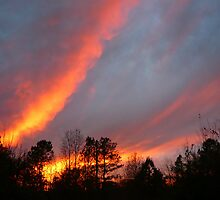Fiery Sky at Sunset by Vivian Eagleson