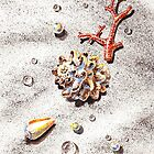 Seashells Corals Pearls and Water Drops by Irina Sztukowski