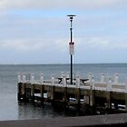 The Pier by Leonie Morris