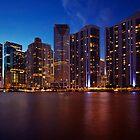 Miami Skyline by DDMITR