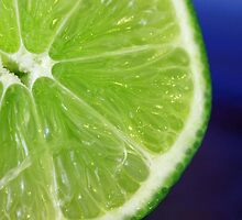 Lime by aprilann
