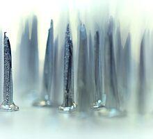 Always enjoy a nice couple of nails... by Bob Daalder