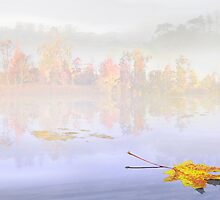 Float Fall 2 by Igor Zenin