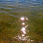 Light reflections on the Sea Water by Susan Wellington
