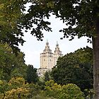 The San Remo - Central Park by VDLOZIMAGES