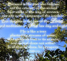 Blessed is the Man Who Follows God by paws4critters
