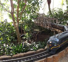 Model Pennysylvania Railroad Trains, New York Botanical Garden Holiday Train Show, Bronx, New York  by lenspiro