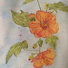 Orange Abutilon by Wendy Sinclair