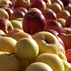 Colorful Apples, Greenmarket, New York Botanical Garden, Bronx, New York by lenspiro
