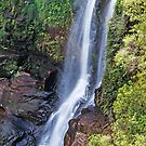 Carrington Falls - Single Drop in the Budderoo National Park by TonyCrehan