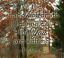 Psalm 23 by paws4critters