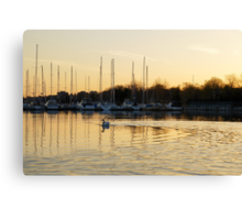 Golden Ripples and Reflections Canvas Print